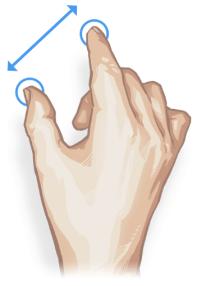 Zoom gestures