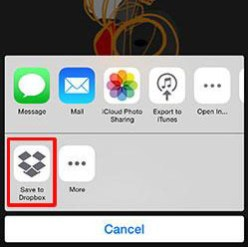 From the iOS Share Sheet, select Save to Dropbox
