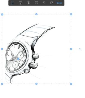 Image in Autodesk Sketchbook distorted using the bias